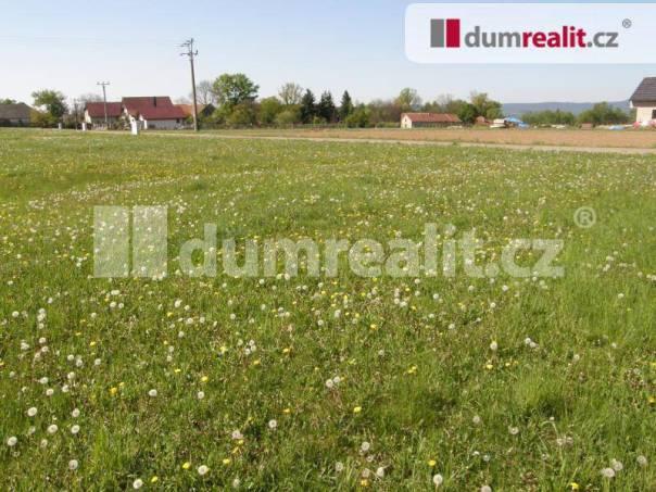 Prodej pozemku, Modřovice, foto 1 Reality, Pozemky | spěcháto.cz - bazar, inzerce