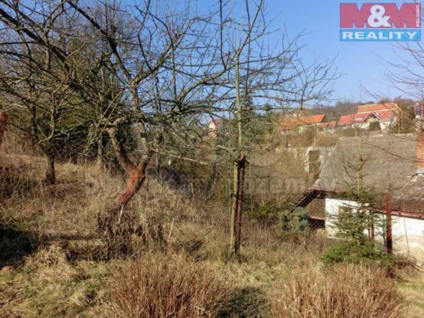 Prodej pozemku, Košíky, foto 1 Reality, Pozemky | spěcháto.cz - bazar, inzerce