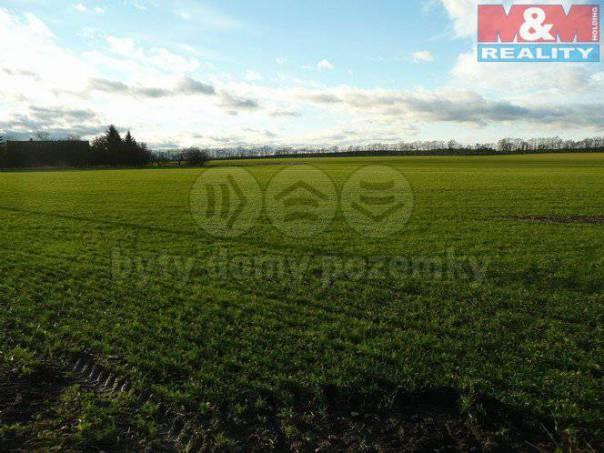 Prodej pozemku, Tatce, foto 1 Reality, Pozemky | spěcháto.cz - bazar, inzerce