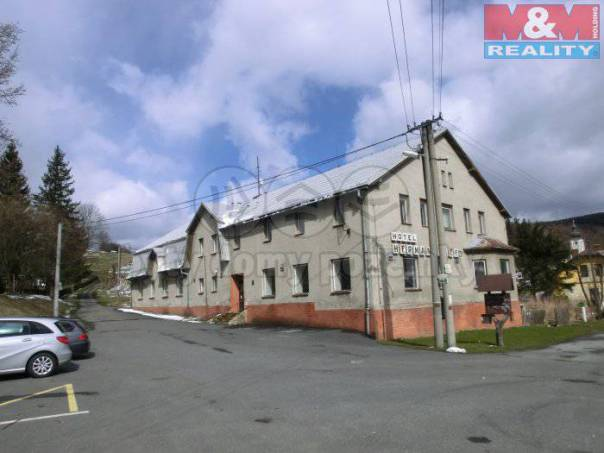 Prodej nebytového prostoru, Heřmanovice, foto 1 Reality, Nebytový prostor | spěcháto.cz - bazar, inzerce