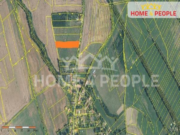Prodej pozemku, Velký Chlumec, foto 1 Reality, Pozemky | spěcháto.cz - bazar, inzerce