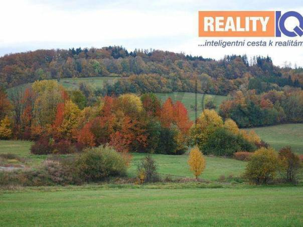 Prodej pozemku, Lhotka, foto 1 Reality, Pozemky | spěcháto.cz - bazar, inzerce