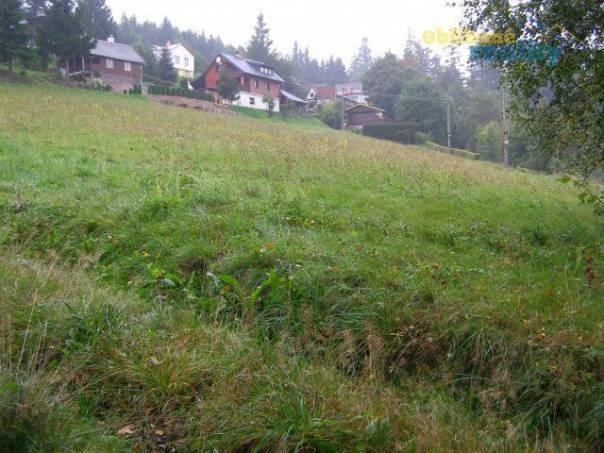 Prodej pozemku, Pastviny, foto 1 Reality, Pozemky | spěcháto.cz - bazar, inzerce