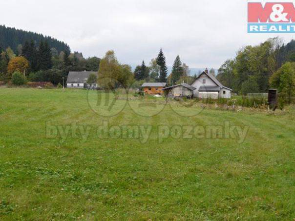 Prodej pozemku, Červená Voda, foto 1 Reality, Pozemky   spěcháto.cz - bazar, inzerce