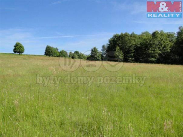 Prodej pozemku, Bruzovice, foto 1 Reality, Pozemky   spěcháto.cz - bazar, inzerce