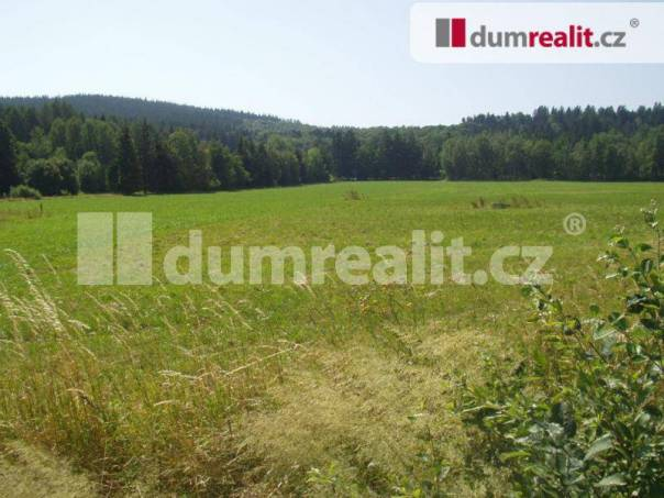 Prodej pozemku, Strážov, foto 1 Reality, Pozemky | spěcháto.cz - bazar, inzerce