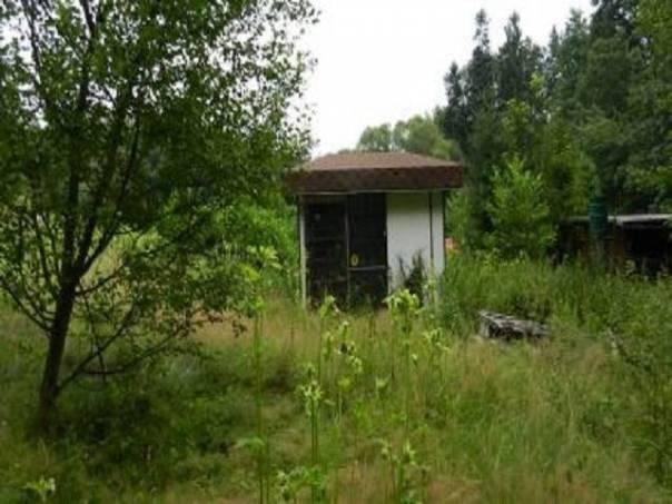 Prodej pozemku, Mistřovice u Českého Těšína, foto 1 Reality, Pozemky | spěcháto.cz - bazar, inzerce