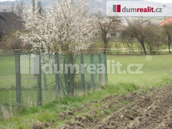 Prodej pozemku, Petkovy, foto 1 Reality, Pozemky | spěcháto.cz - bazar, inzerce