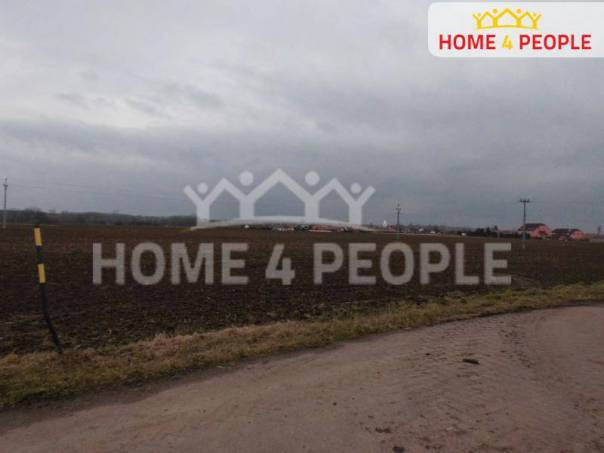 Prodej pozemku, Malešovice, foto 1 Reality, Pozemky | spěcháto.cz - bazar, inzerce