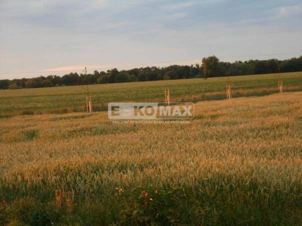 Prodej pozemku, Horní Dunajovice, foto 1 Reality, Pozemky | spěcháto.cz - bazar, inzerce