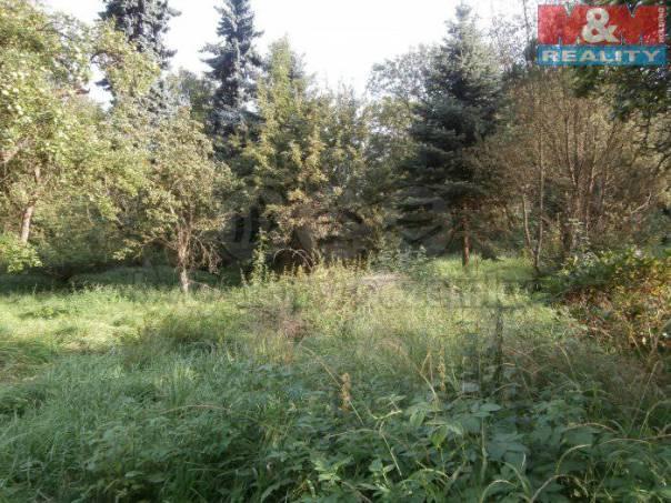 Prodej pozemku, Chrastava, foto 1 Reality, Pozemky | spěcháto.cz - bazar, inzerce