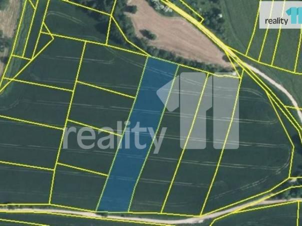 Prodej pozemku, Tehov, foto 1 Reality, Pozemky   spěcháto.cz - bazar, inzerce