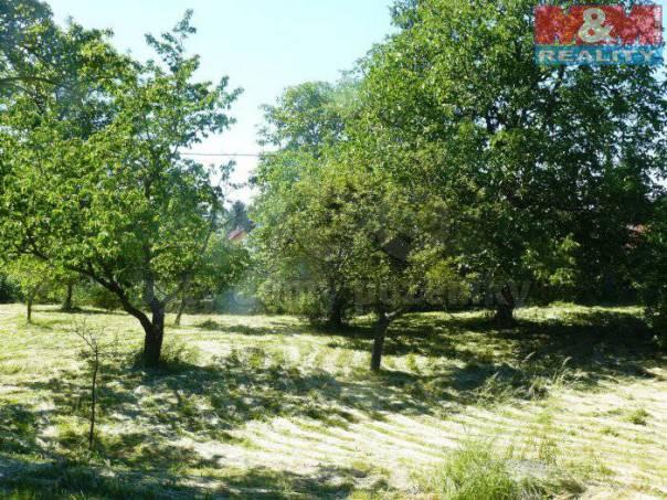 Prodej pozemku, Nové Sedlice, foto 1 Reality, Pozemky | spěcháto.cz - bazar, inzerce