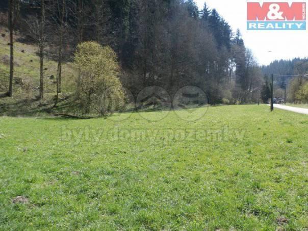 Prodej pozemku, Jindřichov, foto 1 Reality, Pozemky | spěcháto.cz - bazar, inzerce