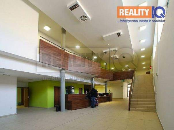 Pronájem bytu 3+kk, Ostrava - Petřkovice, foto 1 Reality, Byty k pronájmu | spěcháto.cz - bazar, inzerce