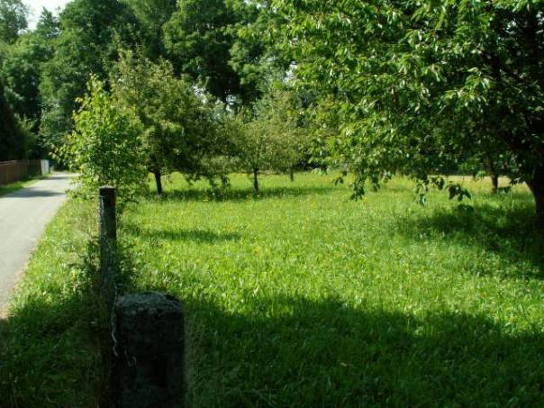 Prodej pozemku, Luková, foto 1 Reality, Pozemky | spěcháto.cz - bazar, inzerce
