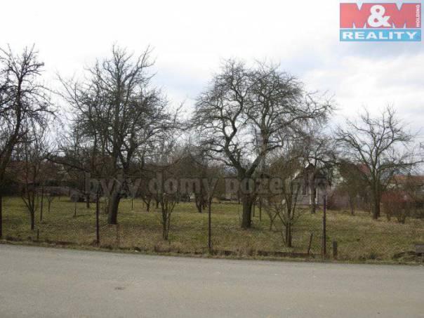 Prodej pozemku, Cetkovice, foto 1 Reality, Pozemky | spěcháto.cz - bazar, inzerce