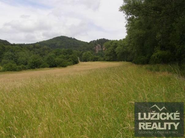 Prodej pozemku, Svojkov, foto 1 Reality, Pozemky | spěcháto.cz - bazar, inzerce