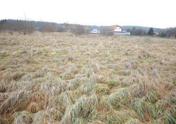 Prodej pozemku, Rokycany, foto 1 Reality, Pozemky | spěcháto.cz - bazar, inzerce