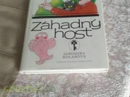 Záhadný host , Hobby, volný čas, Knihy  | spěcháto.cz - bazar, inzerce zdarma