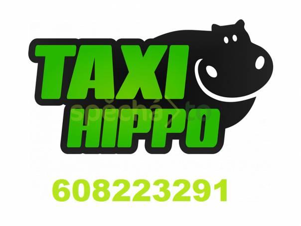 taxi hippo night zlín, foto 1 Obchod a služby, Přeprava, stěhování   spěcháto.cz - bazar, inzerce zdarma