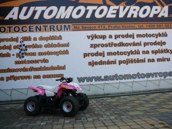Polaris  , foto 1 Auto – moto , Motocykly a čtyřkolky | spěcháto.cz - bazar, inzerce zdarma
