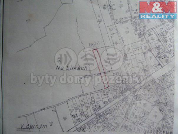 Prodej pozemku, Cerhovice, foto 1 Reality, Pozemky | spěcháto.cz - bazar, inzerce