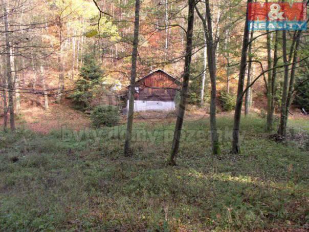 Prodej pozemku, Mrač, foto 1 Reality, Pozemky | spěcháto.cz - bazar, inzerce