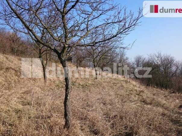 Prodej pozemku, Slavkov u Brna, foto 1 Reality, Pozemky | spěcháto.cz - bazar, inzerce