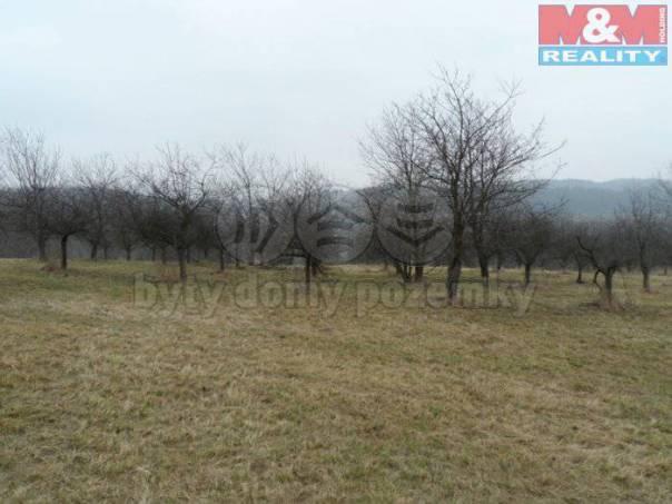 Prodej pozemku, Veselíčko, foto 1 Reality, Pozemky | spěcháto.cz - bazar, inzerce