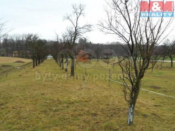 Prodej pozemku, Osíčko, foto 1 Reality, Pozemky | spěcháto.cz - bazar, inzerce