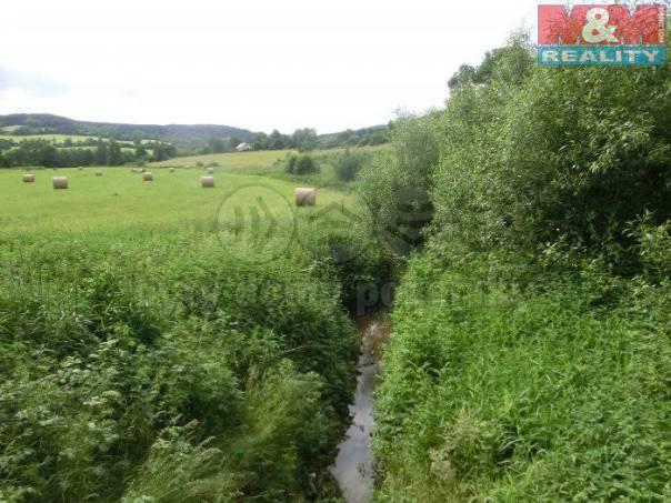Prodej pozemku, Dvory, foto 1 Reality, Pozemky | spěcháto.cz - bazar, inzerce