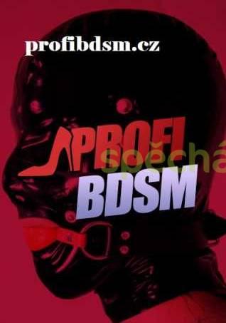 DOM BDSM, foto 1 Seznámení, Hledám muže | spěcháto.cz - bazar, inzerce zdarma