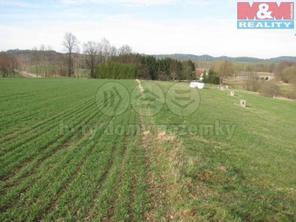 Prodej pozemku, Strunkovice nad Blanicí, foto 1 Reality, Pozemky | spěcháto.cz - bazar, inzerce