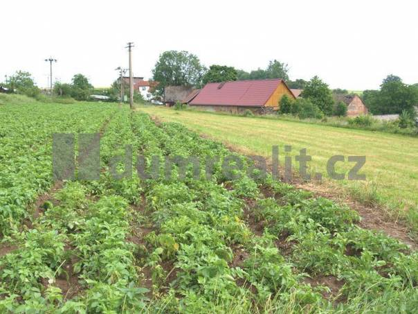 Prodej pozemku, Kozlov, foto 1 Reality, Pozemky | spěcháto.cz - bazar, inzerce