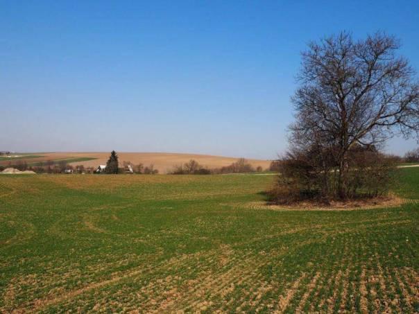 Prodej pozemku, Rájec-Jestřebí - Rájec, foto 1 Reality, Pozemky | spěcháto.cz - bazar, inzerce