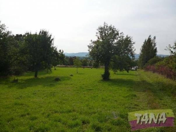 Prodej pozemku, Paceřice, foto 1 Reality, Pozemky | spěcháto.cz - bazar, inzerce