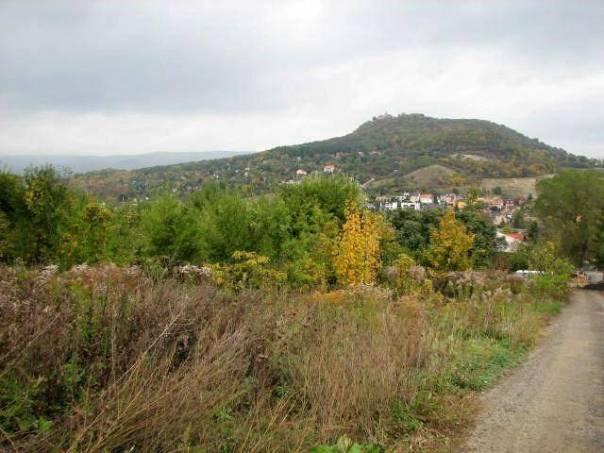 Prodej pozemku Ostatní, Bystřany - Světice, foto 1 Reality, Pozemky | spěcháto.cz - bazar, inzerce