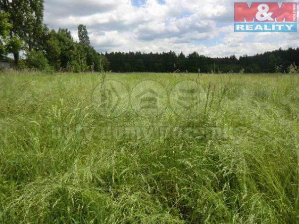 Prodej pozemku, Kladruby, foto 1 Reality, Pozemky | spěcháto.cz - bazar, inzerce