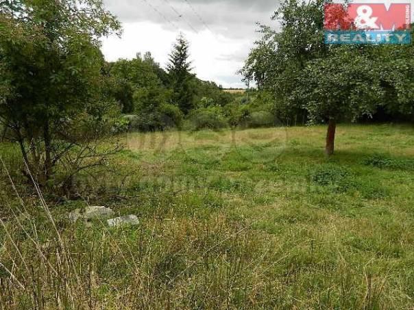 Prodej pozemku, Řepín, foto 1 Reality, Pozemky | spěcháto.cz - bazar, inzerce