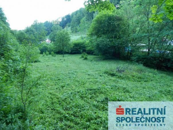 Prodej pozemku, Černý Důl, foto 1 Reality, Pozemky | spěcháto.cz - bazar, inzerce