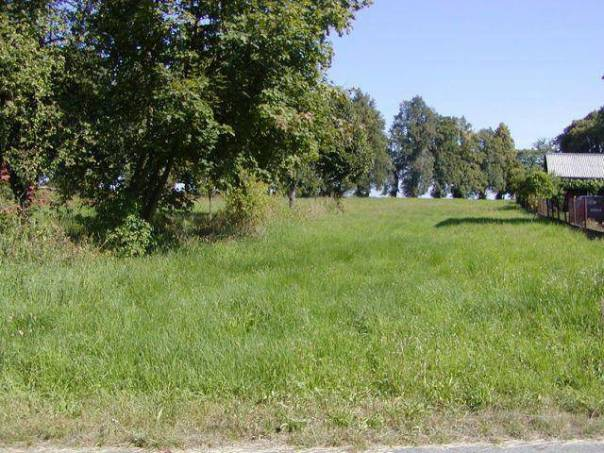 Prodej pozemku, Mladošovice, foto 1 Reality, Pozemky | spěcháto.cz - bazar, inzerce