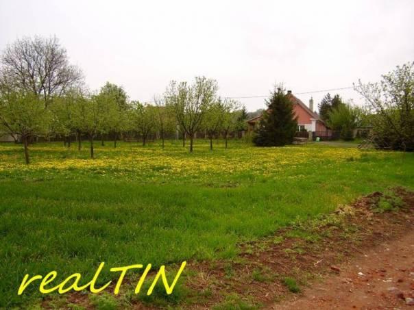 Prodej pozemku, Blšany - Malá Černoc, foto 1 Reality, Pozemky | spěcháto.cz - bazar, inzerce