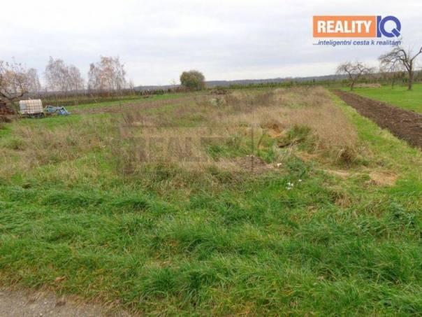 Prodej pozemku, Záříčí, foto 1 Reality, Pozemky | spěcháto.cz - bazar, inzerce