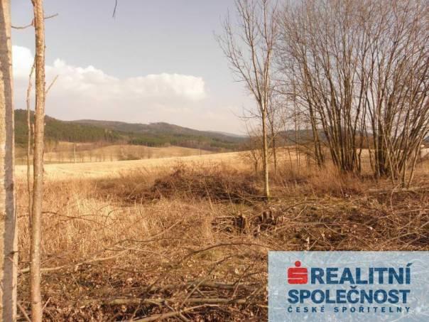 Prodej pozemku, Ktiš - Březovík, foto 1 Reality, Pozemky | spěcháto.cz - bazar, inzerce