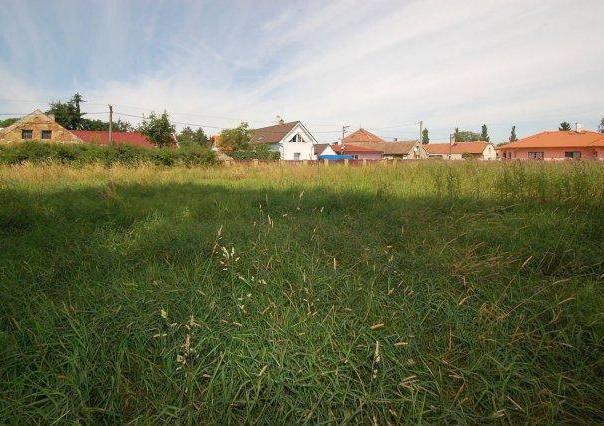 Prodej pozemku, Pavlov, foto 1 Reality, Pozemky | spěcháto.cz - bazar, inzerce