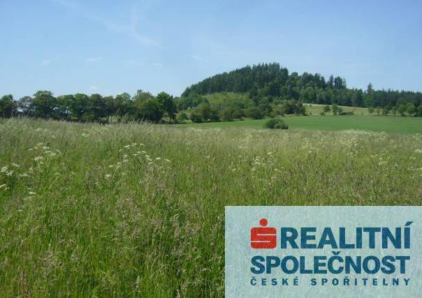 Prodej pozemku, Andělská Hora, foto 1 Reality, Pozemky | spěcháto.cz - bazar, inzerce