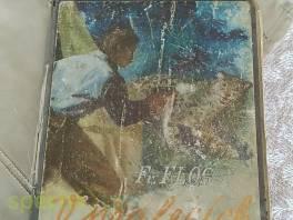V pralesích Ecuadora , Hobby, volný čas, Knihy  | spěcháto.cz - bazar, inzerce zdarma