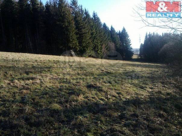 Prodej pozemku, Razová, foto 1 Reality, Pozemky | spěcháto.cz - bazar, inzerce