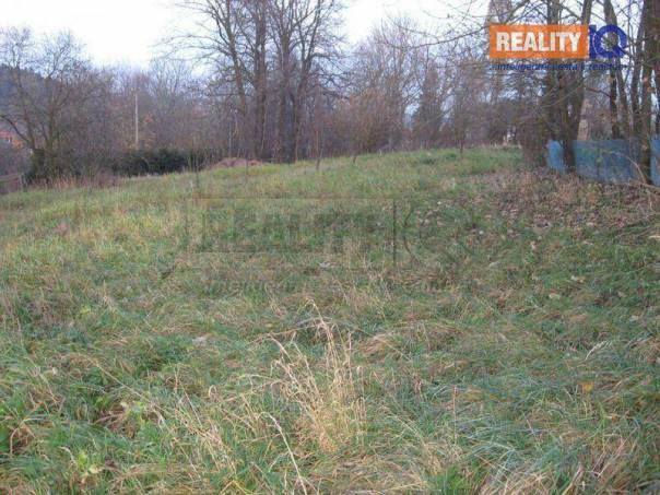 Prodej pozemku, Potštát - Boškov, foto 1 Reality, Pozemky | spěcháto.cz - bazar, inzerce